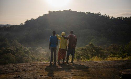 Guardians of the Rainforest Activity Pack